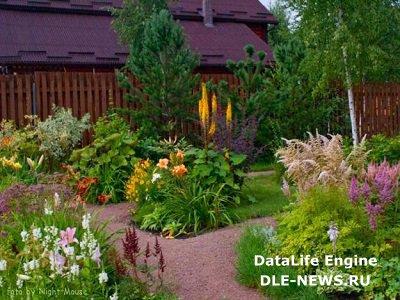 Секреты создания гравийного сада