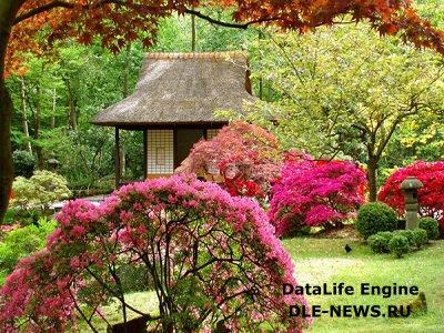 Китайский стиль в ландшафте: сады поэтов и философов