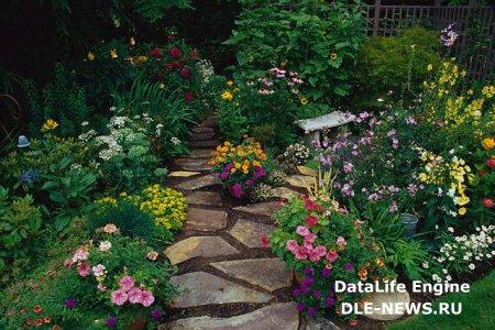 Как обустроить цветник на своем участке?