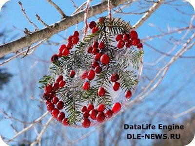 Ледяные идеи к новогодним праздникам