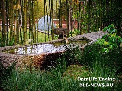 Создать японский сад можно в самом центре города