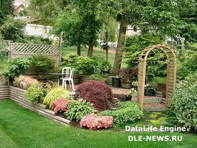 «Зеленая комната» в вашем саду
