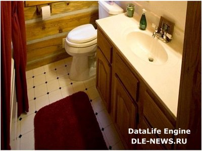 Основные типы туалетов для загородных домов