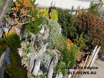 Рутарий: населяем сад мифическими существами