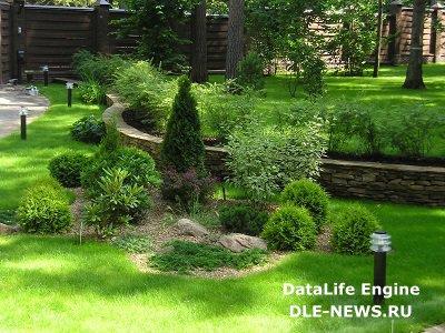 Загородный участок и декоративные кустарники – идеальное сочетание