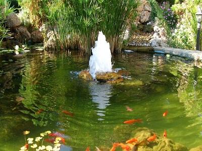 Фонтан брызг: создаем декоративный источник на садовом участке