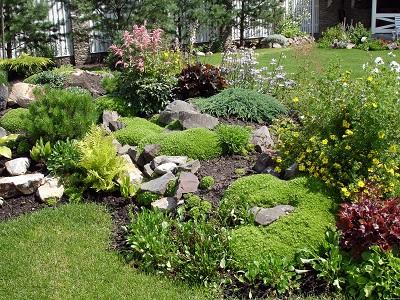 Альпийская горка: цветущий островок в зелени сада