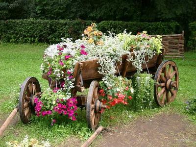Виды садового декора