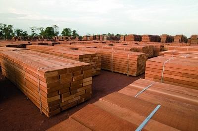 Строительство дома из ценных пород дерева